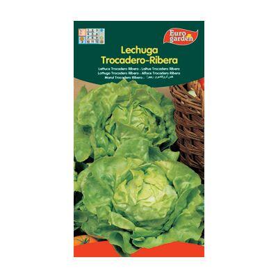 Semillas de Lechuga Trocadero-Ribera