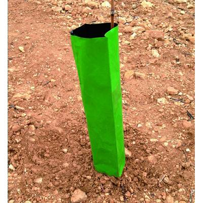 Protector faja lámina tubo Coex 40 x 16 cm - Pack 100 ud