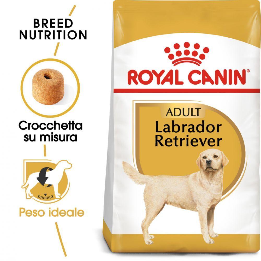 Royal Canin 2 x 3 kg pienso para perros ¡a precio especial! - Schnauzer Miniatura Adult